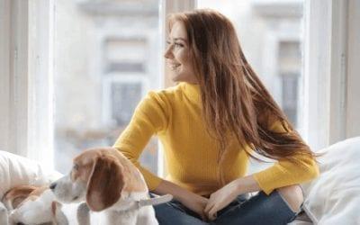 Beagle allergie: hoe merk je het op en wat kan je doen?
